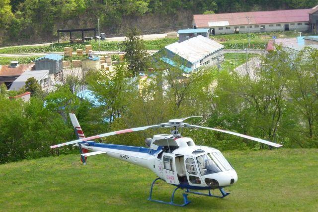 遊覧ヘリコプター